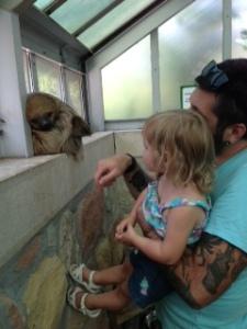 Meeting a Sloth  Photo By Jennifer Mitchell