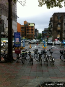 Bicycles lined up